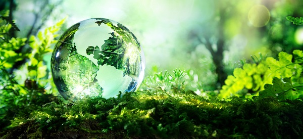 GK Questions with answers on Environment & Ecology