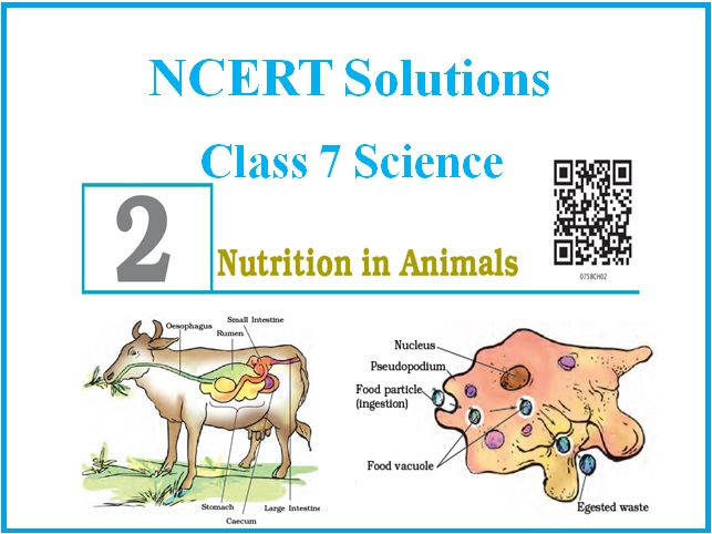NCERT Solutions For CBSE Class 7 Science Chapter 2