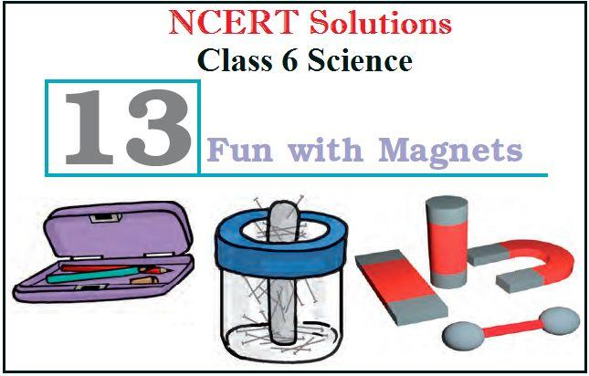 NCERT Solutions for Class 6 Science Chapter 13: Fun with Magnets