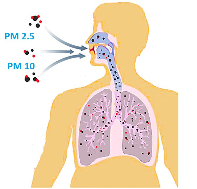 What is PM 2.5 and PM10 and how they affect health?