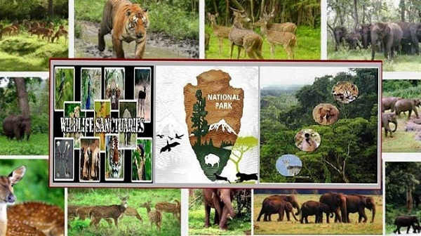 Difference between wildlife sanctuary, biosphere reserves and
