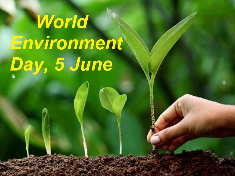 World Environment Day 2020 Current Theme History Significance
