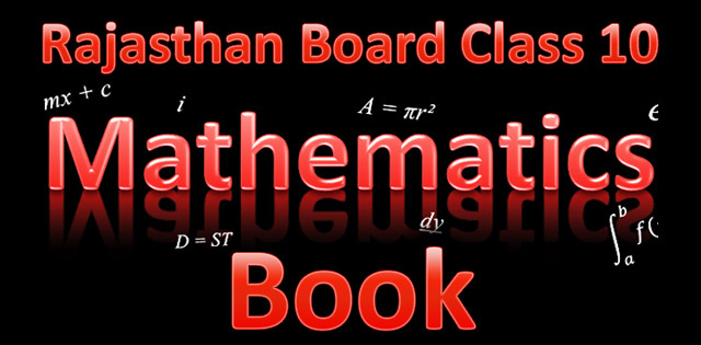 Rajasthan Board Class 10 Computer Book