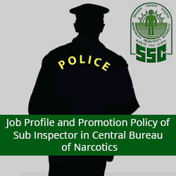 Job Profile and Promotion Policy