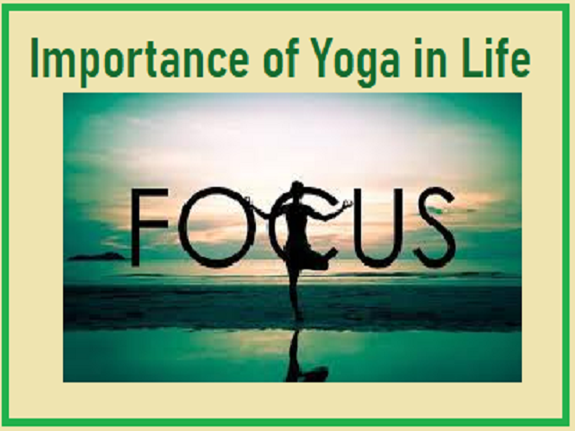 International Yoga Day 2020 Importance Of Yoga In Life
